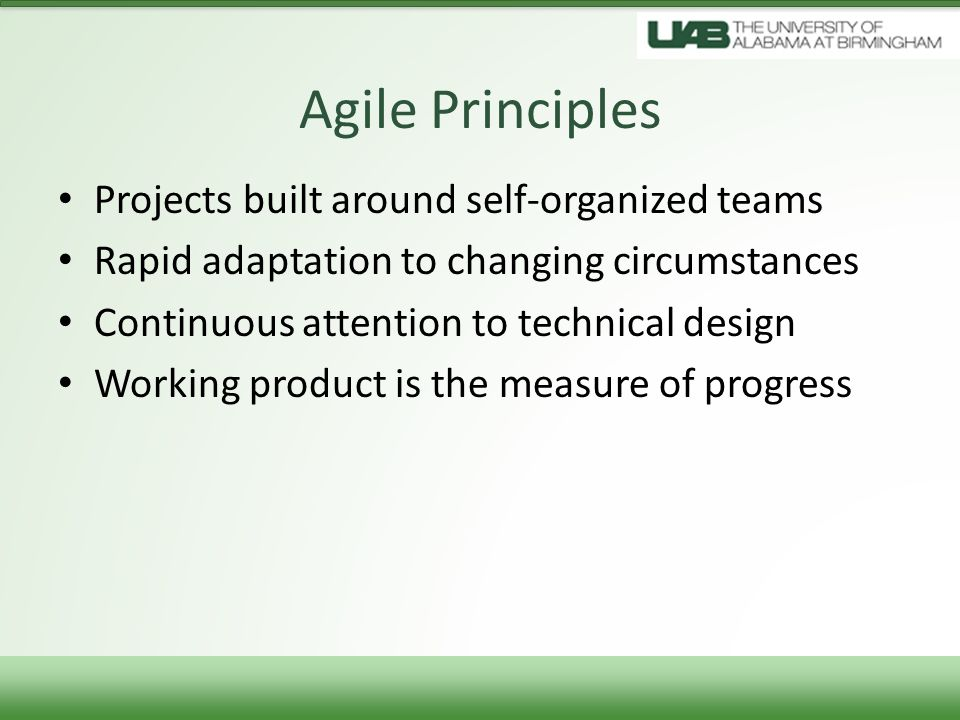 Agile Principles Projects built around self-organized teams