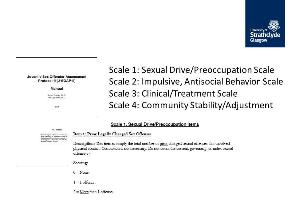 Scale 1: Sexual Drive/Preoccupation Scale