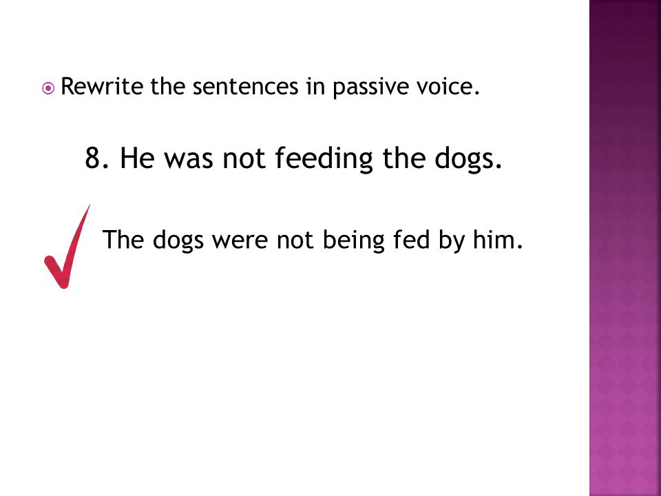 8. He was not feeding the dogs.