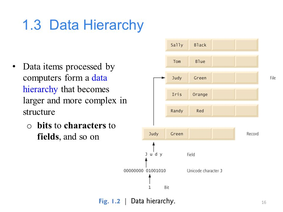 1.3 Data Hierarchy Data items processed by computers form a data hierarchy that becomes larger and more complex in structure.