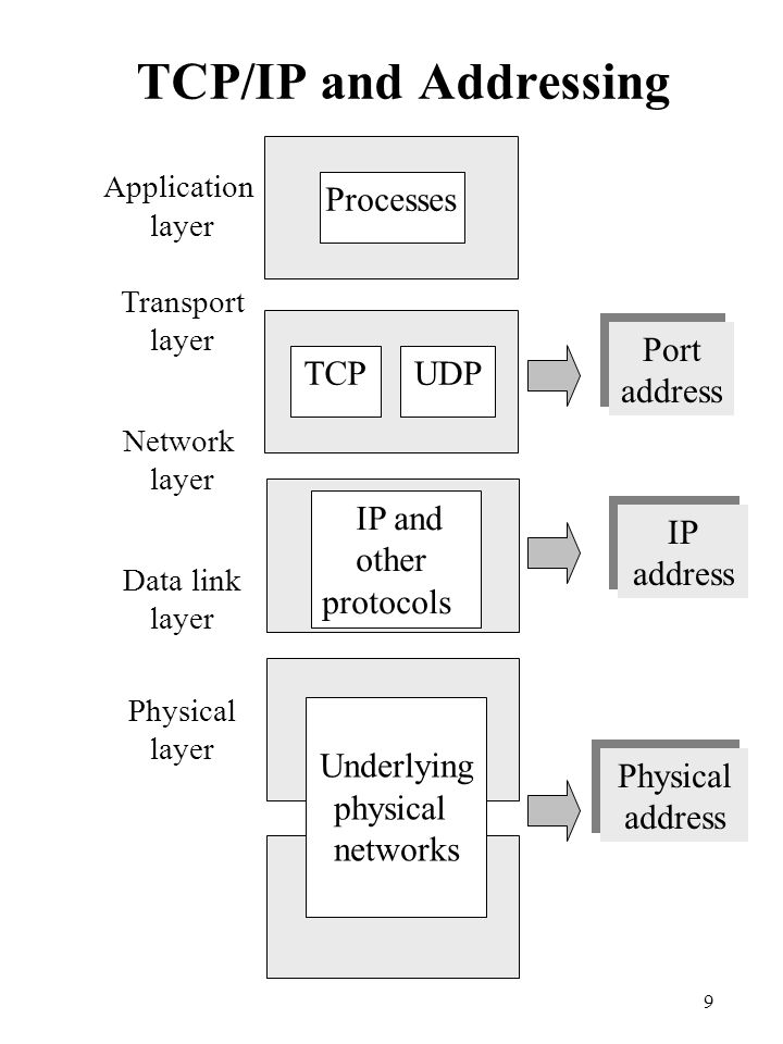 TCP/IP and Addressing Processes Port address TCP UDP IP and other