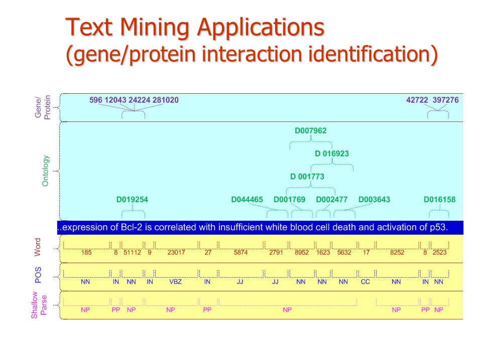 Text Mining Applications (gene/protein interaction identification)