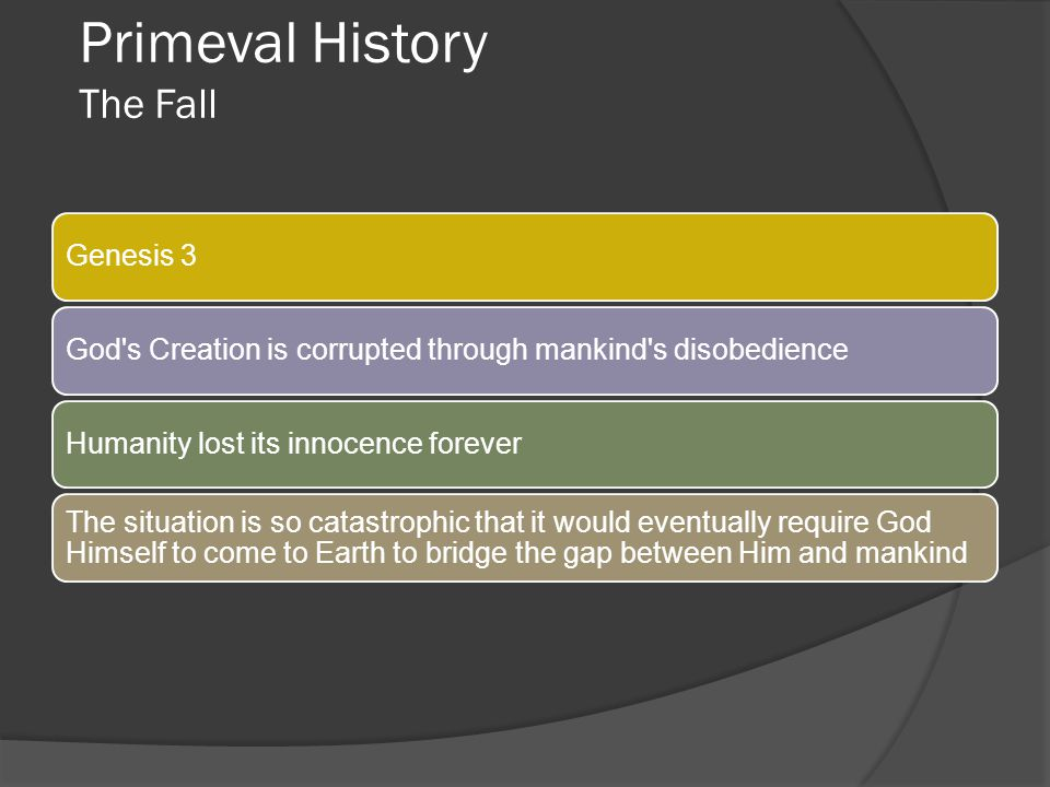 Primeval History The Fall