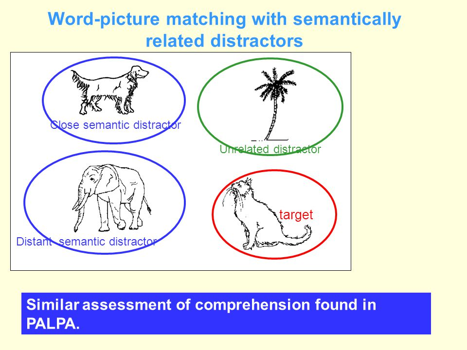 Word-picture matching with semantically related distractors
