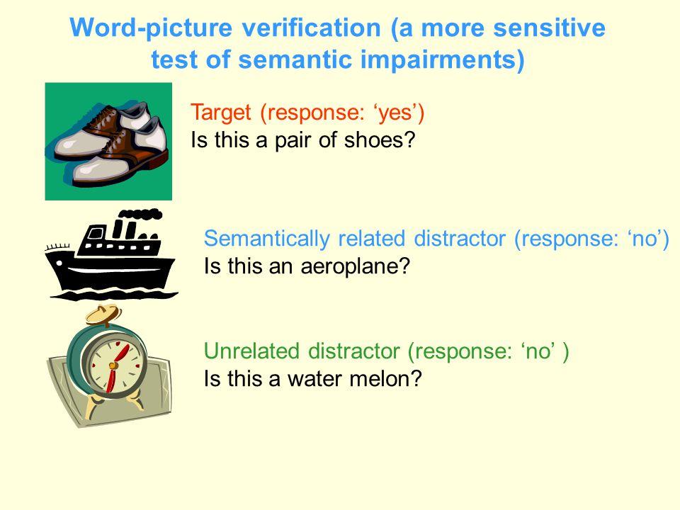 Word-picture verification (a more sensitive test of semantic impairments)
