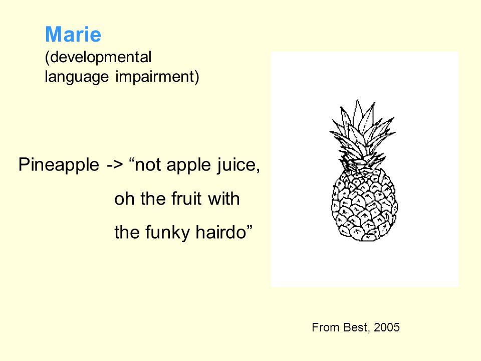 Marie (developmental language impairment)