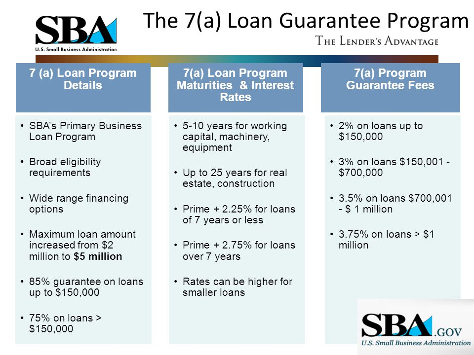 The 7(a) Loan Guarantee Program