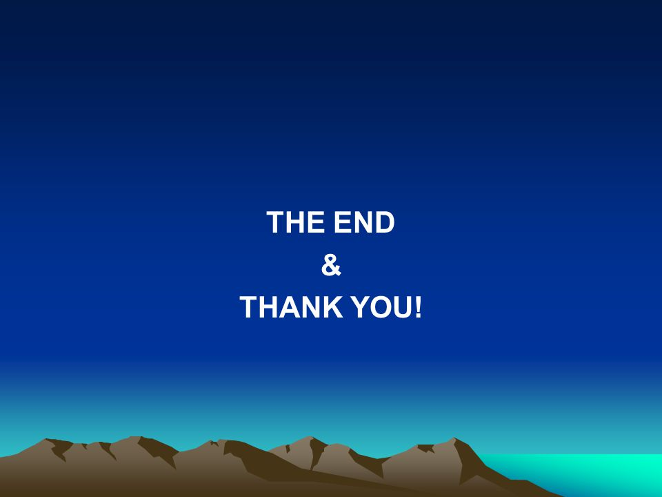 THE END & THANK YOU!