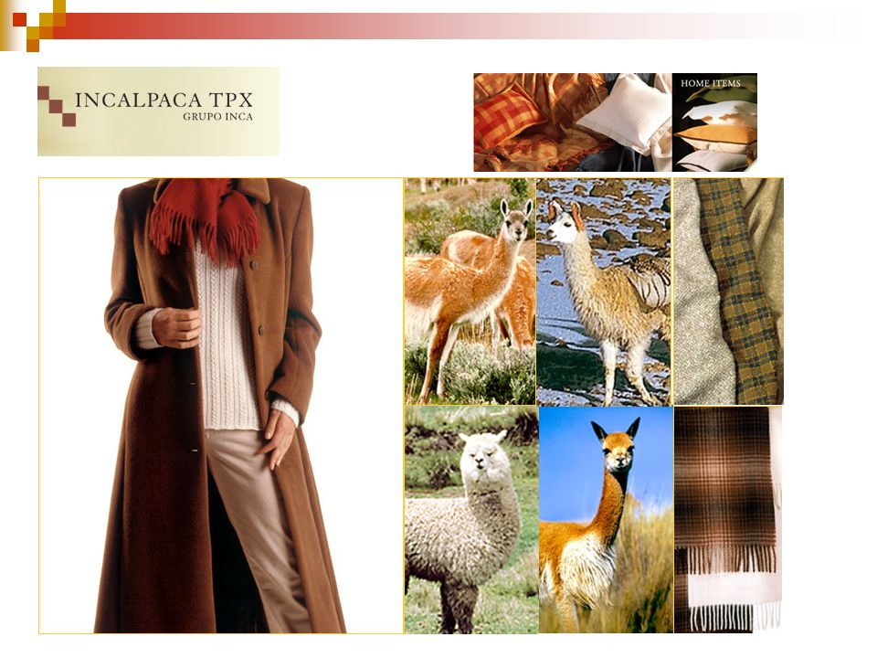 Incalpaca is a knitwear, outerwear and home manufacturer that employs camelid fibres of all four varieties, that is, from top left clockwise, Guanaco, Llama, Vicuña and Alpaca.