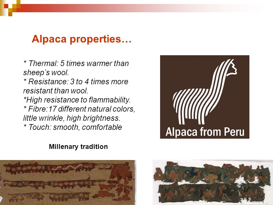 Alpaca properties… * Thermal: 5 times warmer than sheep's wool.