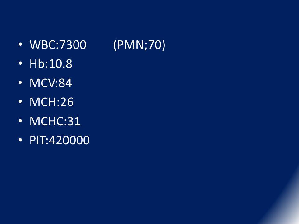 WBC:7300 (PMN;70) Hb:10.8 MCV:84 MCH:26 MCHC:31 PIT:420000