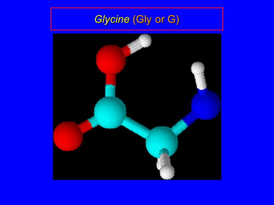 Glycine (Gly or G)