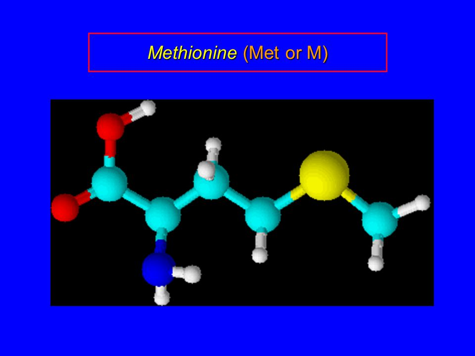 Methionine (Met or M)