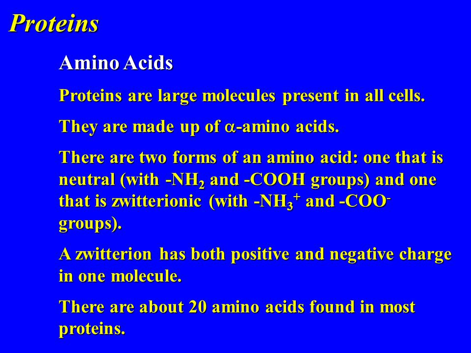 Proteins Amino Acids. Proteins are large molecules present in all cells. They are made up of -amino acids.
