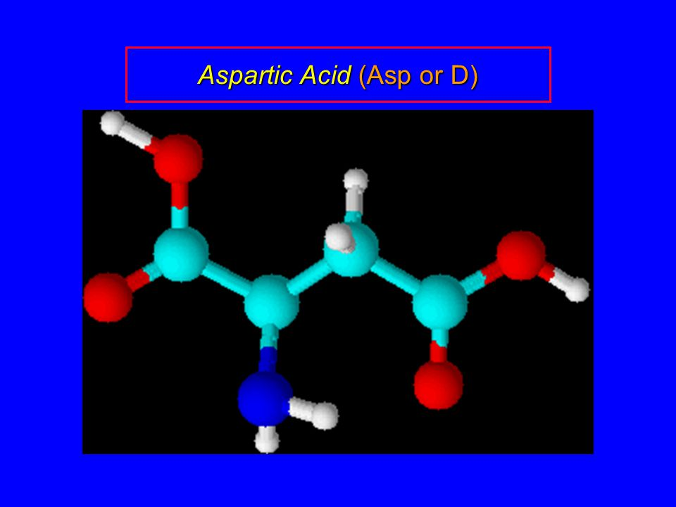 Aspartic Acid (Asp or D)