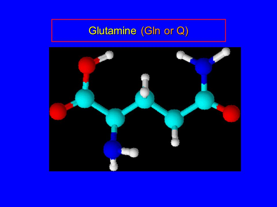 Glutamine (Gln or Q)