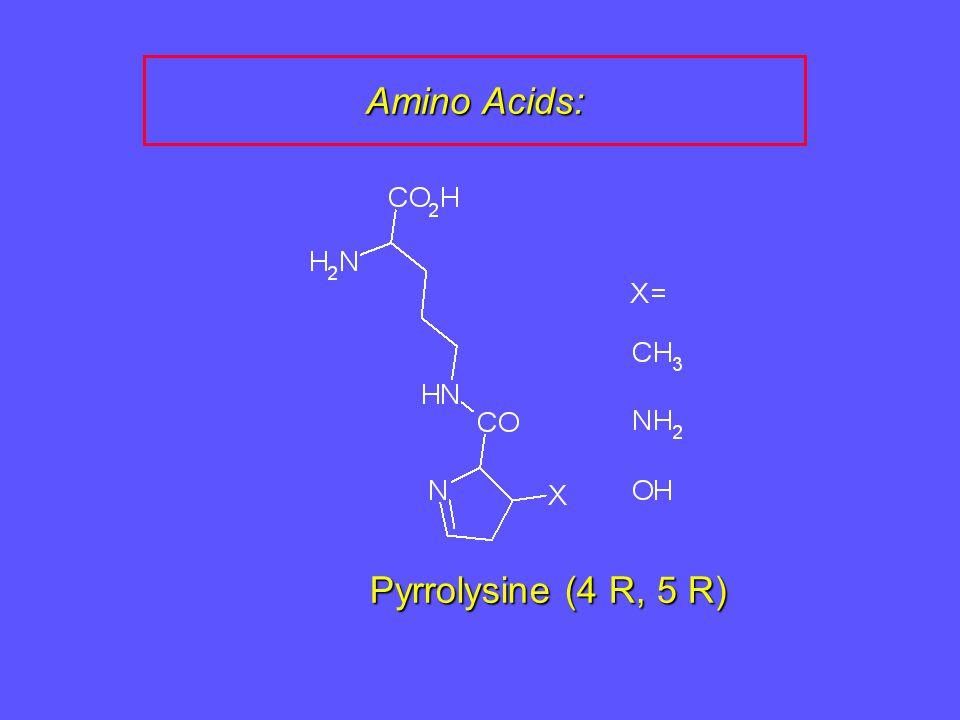 Amino Acids: Pyrrolysine (4 R, 5 R)