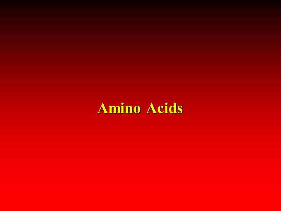 Amino Acids 4