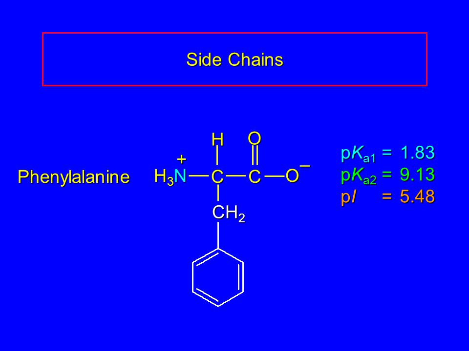 Side Chains H3N C O – H + CH2 pKa1 = 1.83 pKa2 = 9.13 pI = 5.48 Phenylalanine