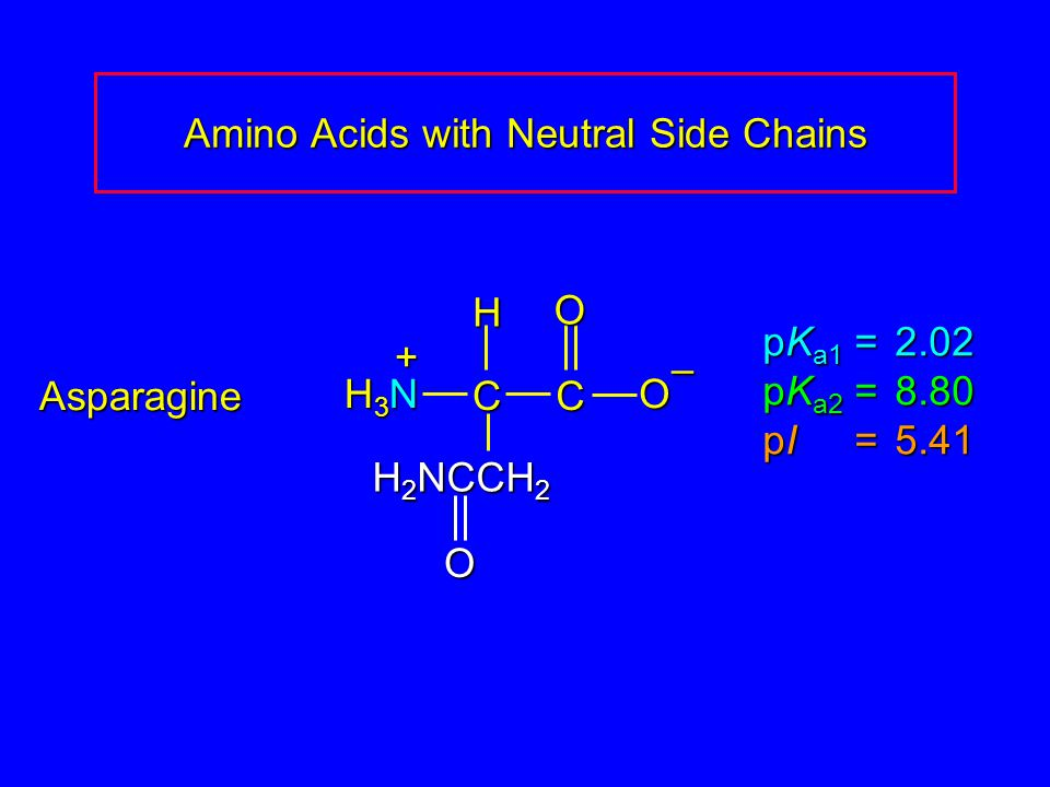 Amino Acids with Neutral Side Chains