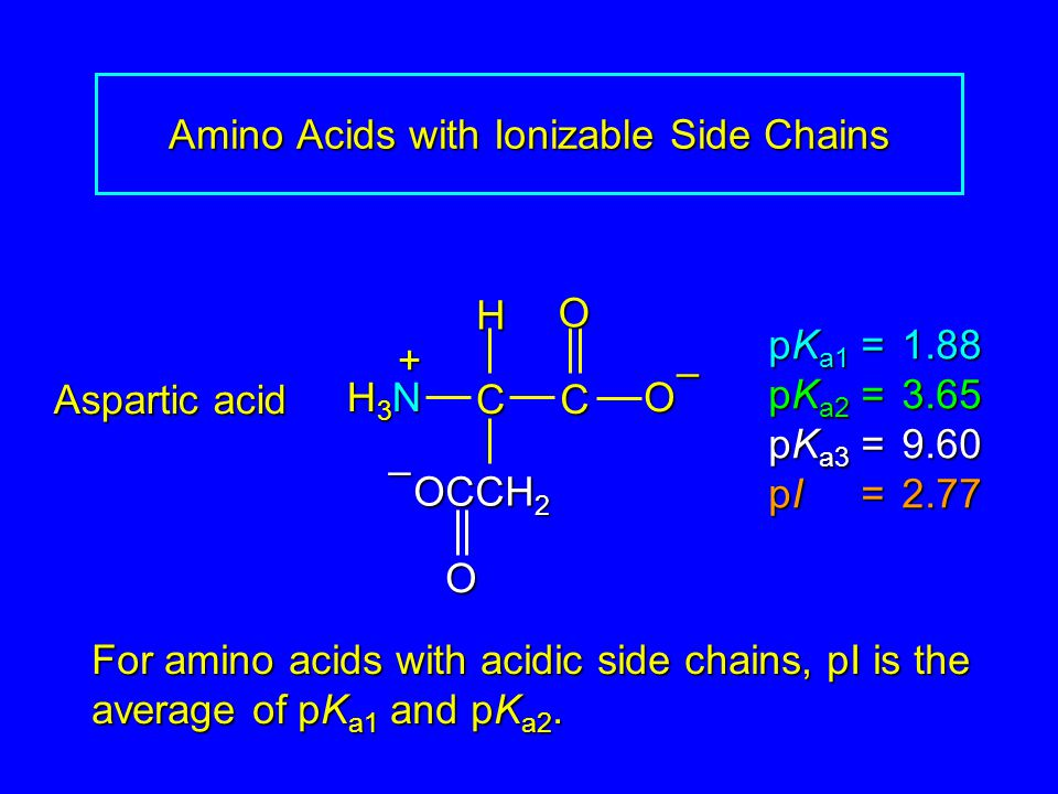 Amino Acids with Ionizable Side Chains