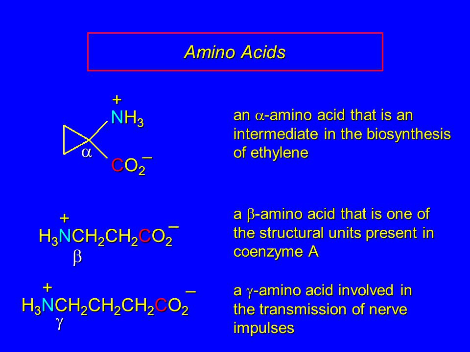 Amino Acids + NH3 a – CO2 + – H3NCH2CH2CO2 b + – H3NCH2CH2CH2CO2 g