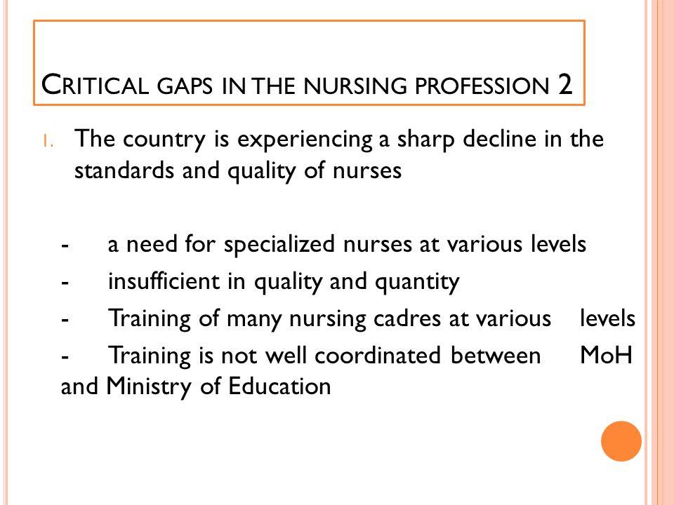 Critical gaps in the nursing profession 2