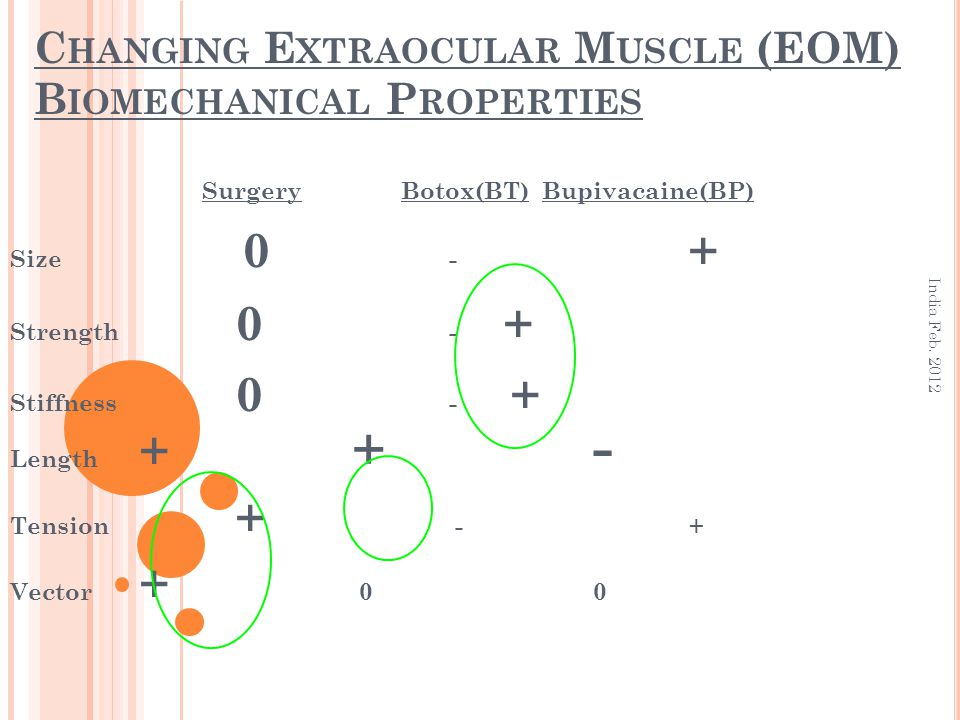 Changing Extraocular Muscle (EOM) Biomechanical Properties