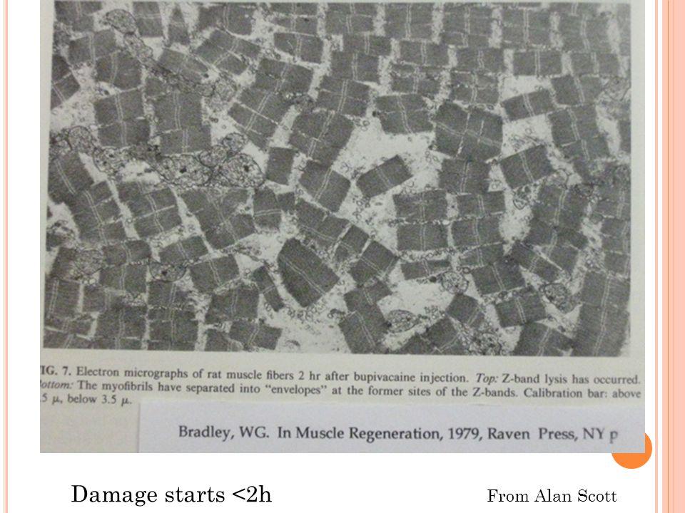Damage starts <2h From Alan Scott