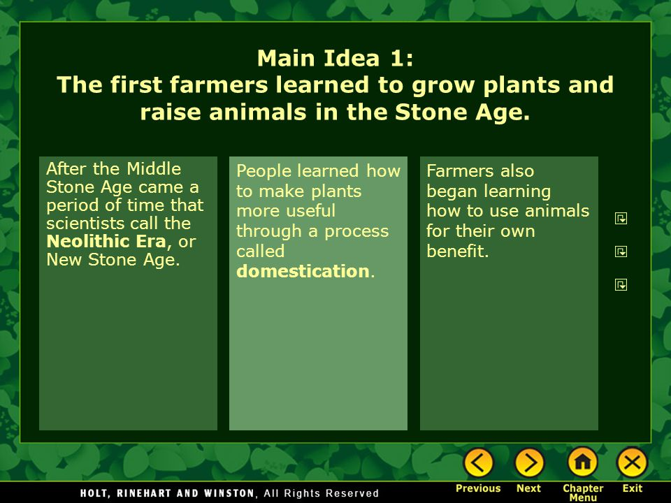 Main Idea 1: The first farmers learned to grow plants and raise animals in the Stone Age.