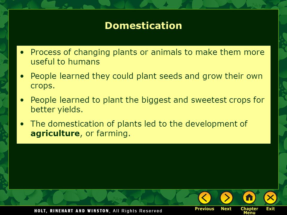 Domestication Process of changing plants or animals to make them more useful to humans.
