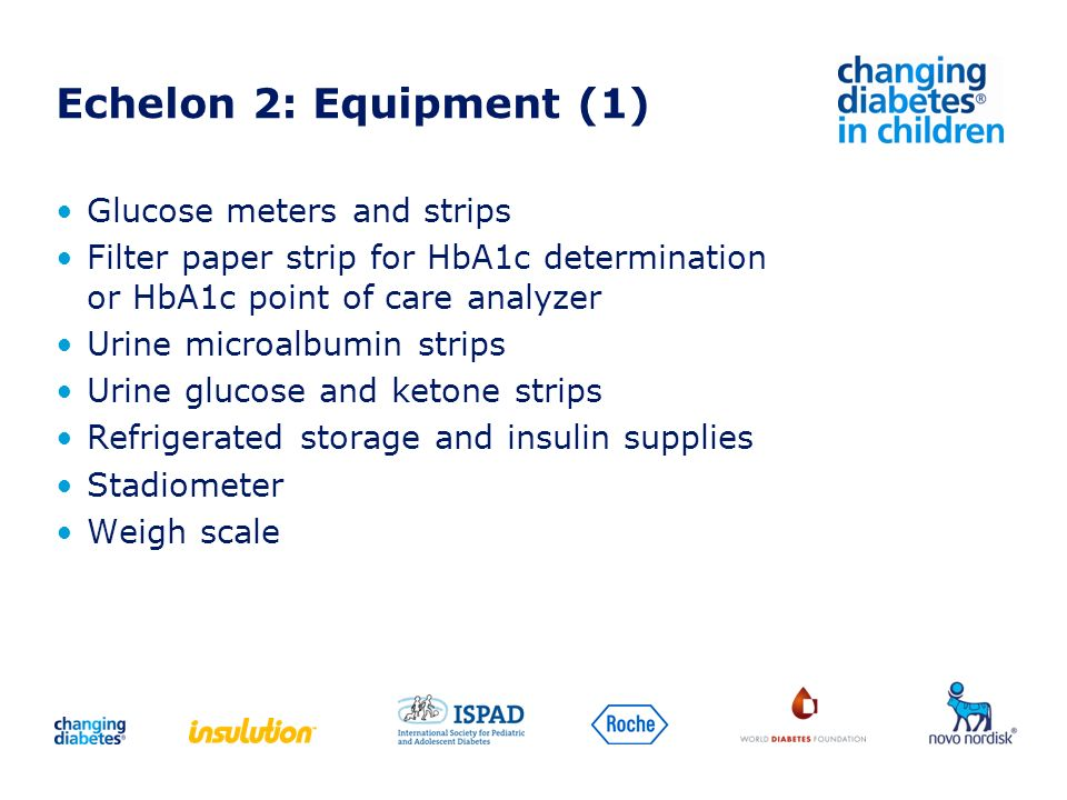 Echelon 2: Equipment (1) Glucose meters and strips