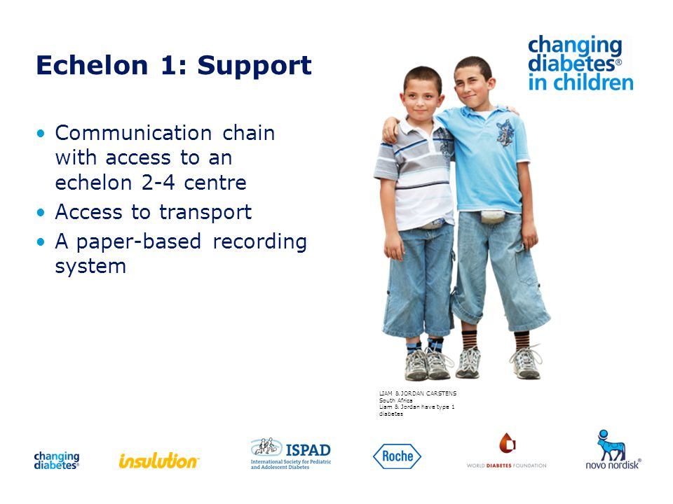 Echelon 1: SupportCommunication chain with access to an echelon 2-4 centre. Access to transport. A paper-based recording system.