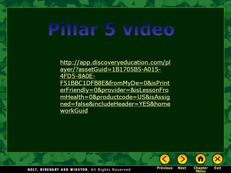 Pillar 5 video