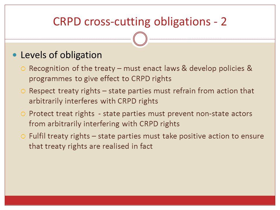 CRPD cross-cutting obligations - 2