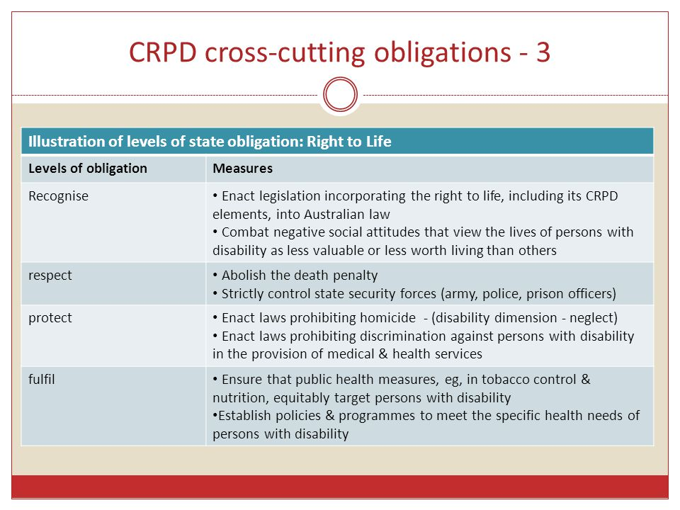 CRPD cross-cutting obligations - 3