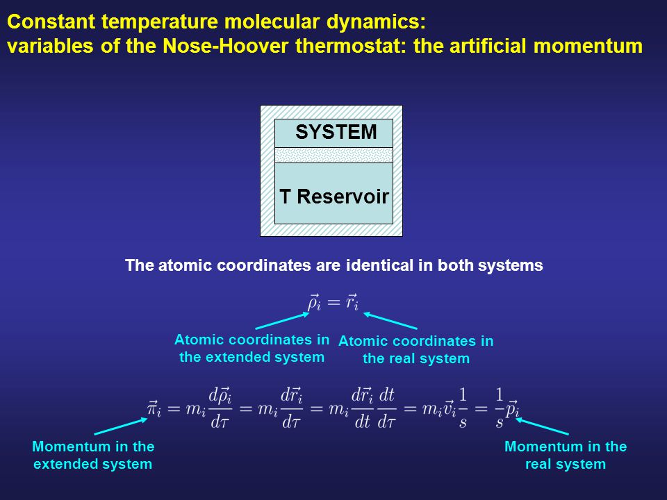 Constant temperature molecular dynamics: variables of the Nose-Hoover thermostat: the artificial momentum