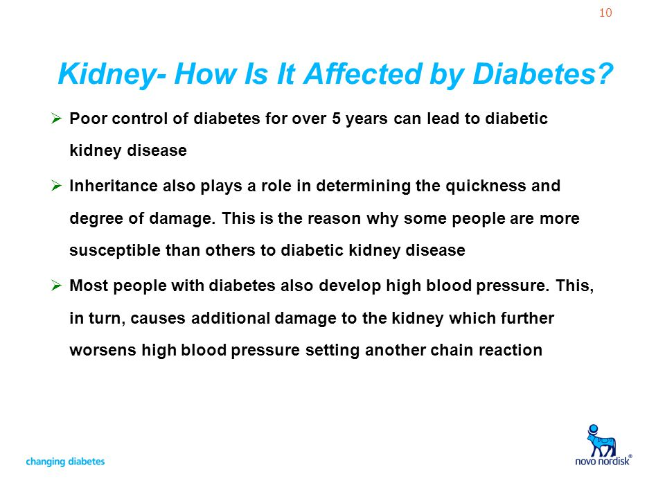 Kidney- How Is It Affected by Diabetes