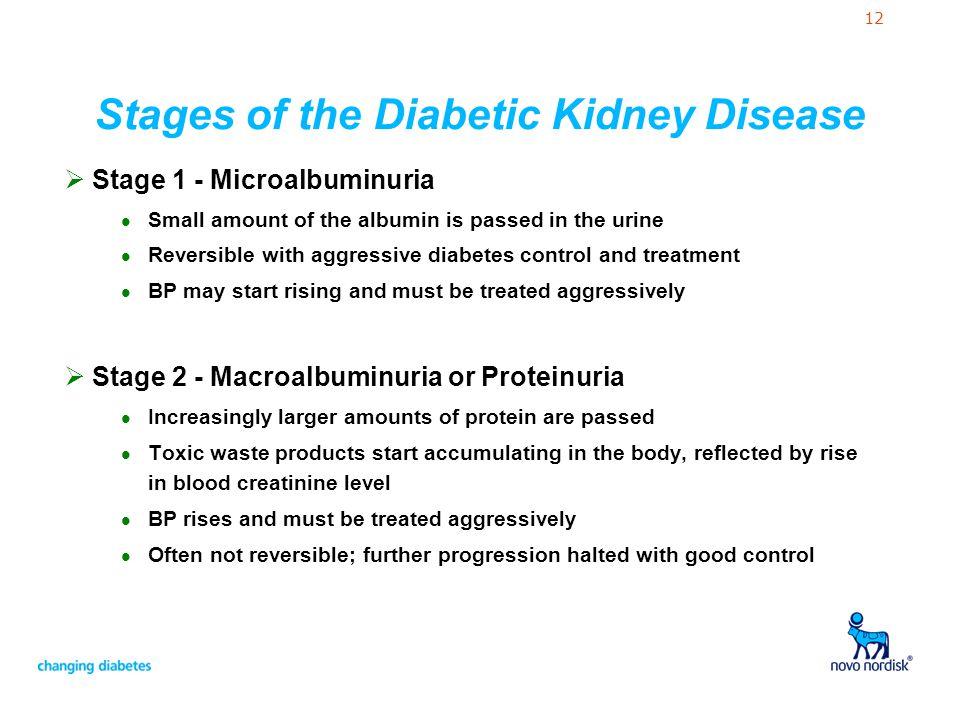 Stages of the Diabetic Kidney Disease