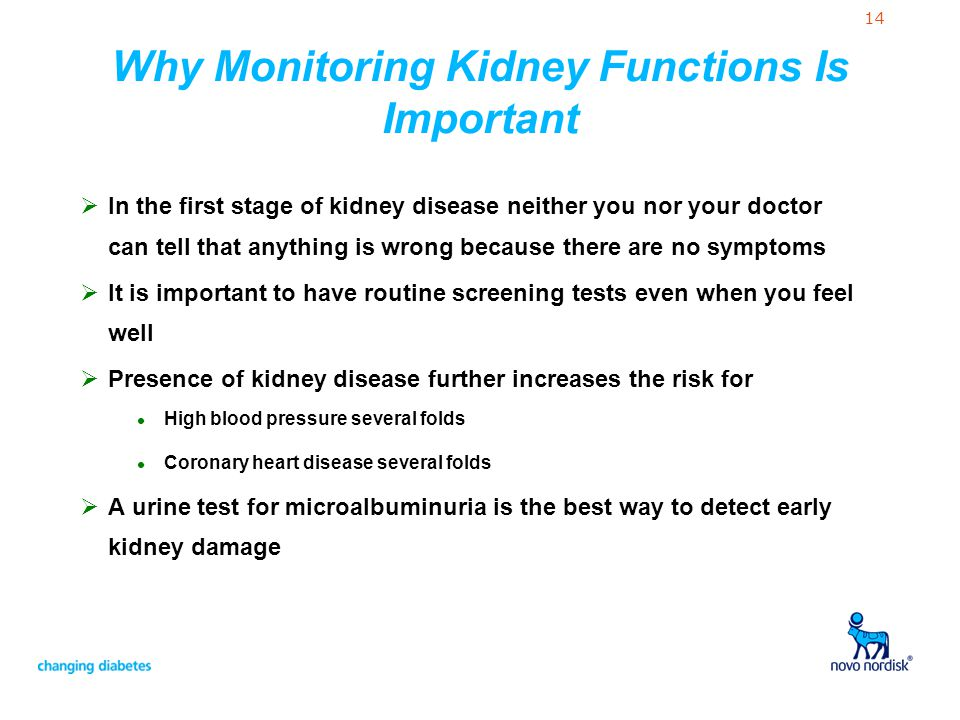 Why Monitoring Kidney Functions Is Important