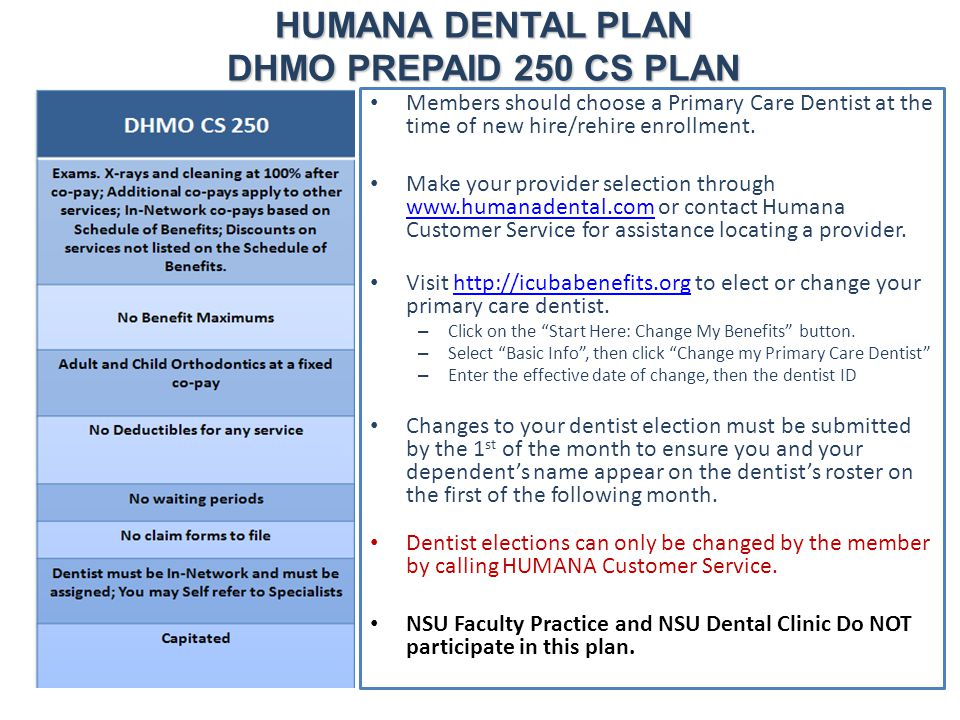 HUMANA DENTAL PLAN DHMO PREPAID 250 CS PLAN