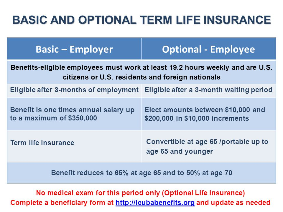 BASIC AND OPTIONAL TERM LIFE INSURANCE