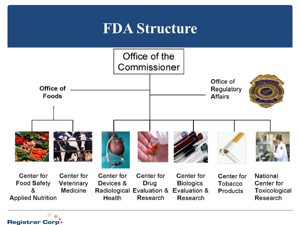 FDA Structure