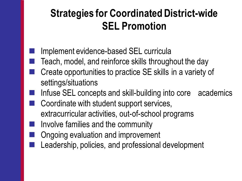 Strategies for Coordinated District-wide SEL Promotion