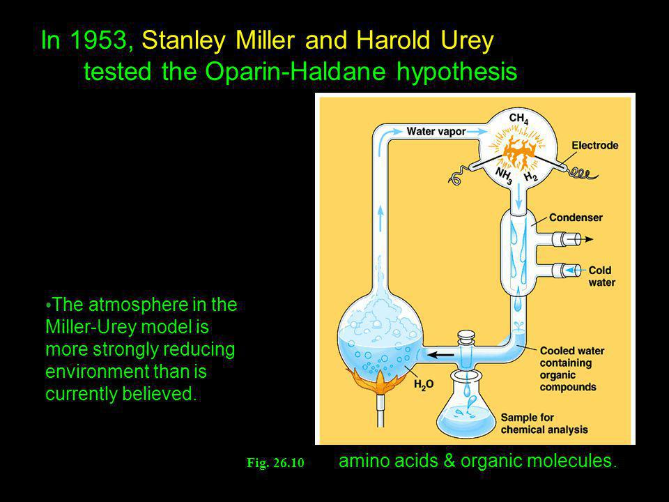 In 1953, Stanley Miller and Harold Urey tested the Oparin-Haldane hypothesis