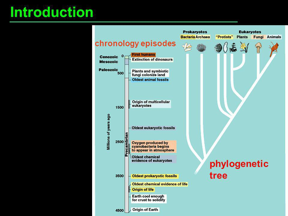 Introduction phylogenetic tree chronology episodes Fig. 26.1
