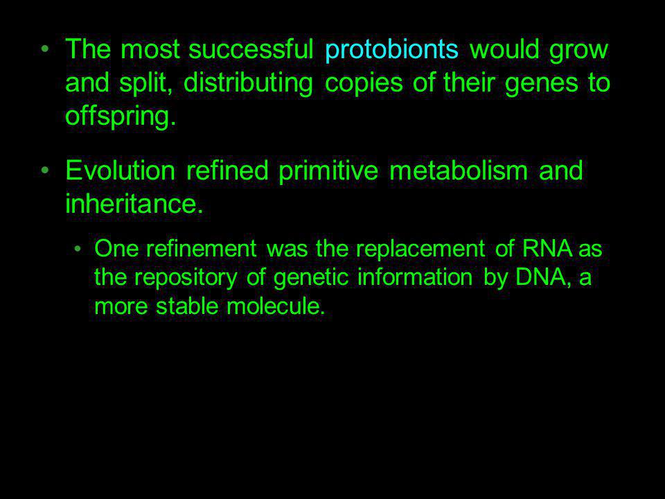 Evolution refined primitive metabolism and inheritance.