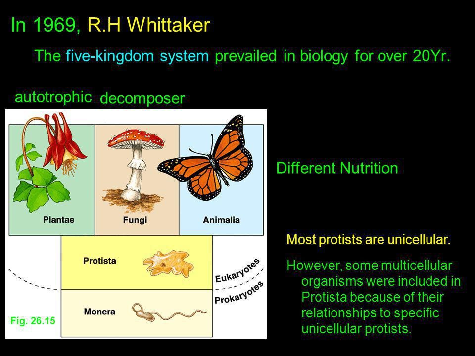 In 1969, R.H Whittaker The five-kingdom system prevailed in biology for over 20Yr. autotrophic. decomposer.