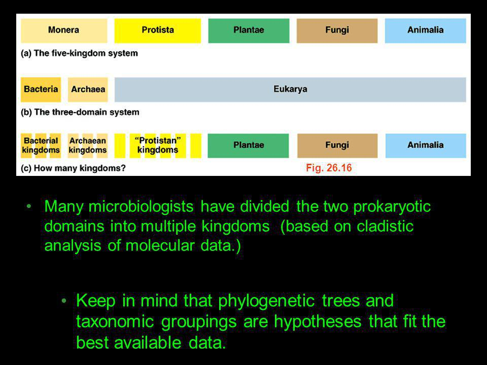 Fig. 26.16 Many microbiologists have divided the two prokaryotic domains into multiple kingdoms (based on cladistic analysis of molecular data.)