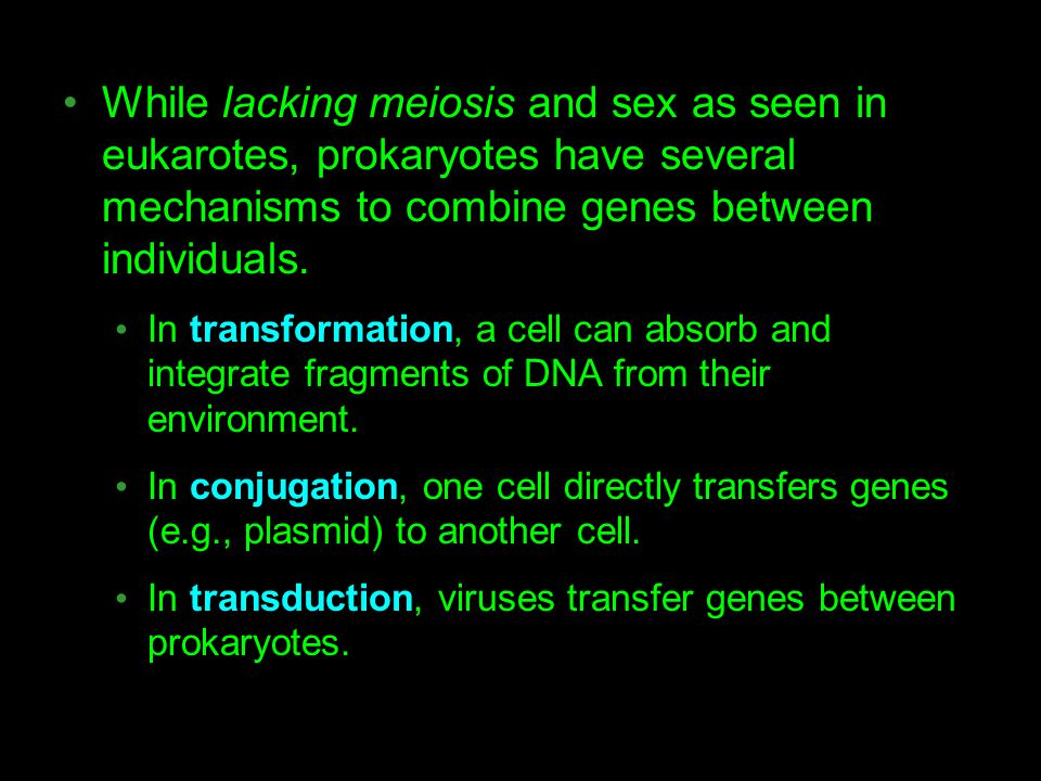 While lacking meiosis and sex as seen in eukarotes, prokaryotes have several mechanisms to combine genes between individuals.